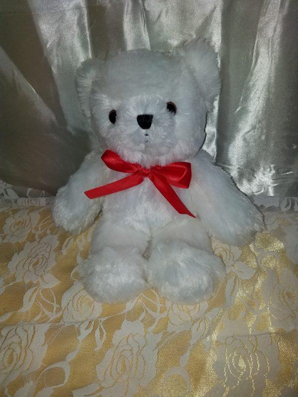 teddy_b_white